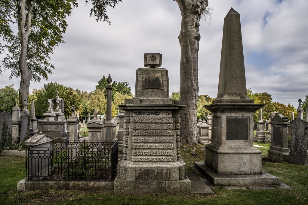 SEPTEMBER 2018 VISIT TO GLASNEVIN CEMETERY [ I USED A BATIS 25mm LENS AND I EXPERIMENTED WITH CAPTURE ONE]-144804