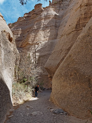 Forward, Up the Slot Canyon Trail (Whidbey LVR) Tags: lyle rains lylerains em5ii tent rocks newmexico olympus kashakatuwe national monument desert geology painted cliff slot canyon hoodoo