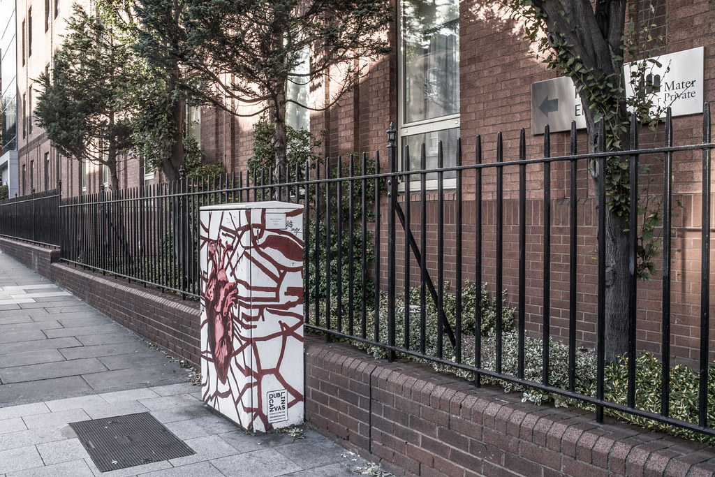 HOME IN YOUR CHEST BY OLEG BRAZHNYK [PAINT-A-BOX STREET ART ON ECCLES STREET IN DUBLIN]-144965