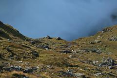 Brume sur le lac des Dix (bulbocode909) Tags: valais suisse valdesdix lacdesdix lacs montagnes nature brume rochers vert bleu