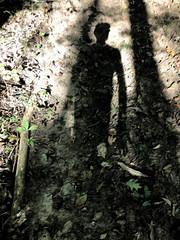 "north georgia barefoot hike (""One who sits by the fire"") Tags: forest trail woodlandtrail trailthroughtheforest foresttrail hiking barefoothiking shadows longshadows selfportrait georgia northgeorgia"