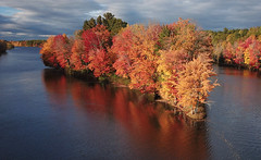 Colors All Around (hessamt) Tags: maple color red beautiful orange yellow reflection multicolor rainbow djimavicproplatinum aerial part107 azur universityofmaine oldtownmaine penobscotriver autumn fallfoliage centralmaine ash birch poplar spruce gilmanfalls