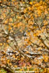 Intimo autunno (quanuaua) Tags: ifttt 500px livigno autumn branch sanrocco italy alps alpine village october