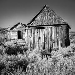 Weathered Buildings (saganorth2000) Tags: california shack change decrepit monochrome sagebrush easternsierra bushes bodie decaying weathered bodiestatehistoricpark blackandwhite building texture
