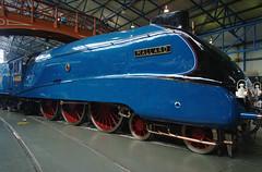 Mallard Side (Ravensthorpe) Tags: york rail nrm trains steam gresleya4