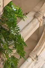 Lecce - centro storico - 18 (MoJo0103) Tags: italia italy italien puglia apulien lecce leccecentrostorico