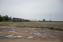 Death Stars and Cotton Fields (ajketh) Tags: cn canadian canadien national railway railroad freight train ic illinois central yazoo subdivision walls ms mississippi memphis tn tennessee emd sd70 ge general electric gevo cotton fields farm country city harrison yard cloudy overcast