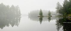 Foggy, lazy morning on Nine Mile Lake (Ula_J) Tags: muskoka ontario yourtodiscover yourstodiscover lake ninemilelake canada water morning fogg foggy cottage forest boat house boathouse shore reflection