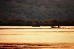 464A6565F (Cilmeri) Tags: sunsets lakes reflections goldenhour fishing boats trawsfynyddlake trawsfynydd dailypost gwynedd snowdonia eryri wales
