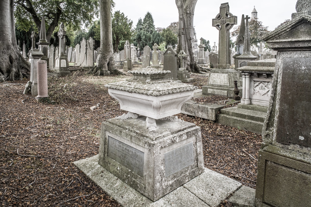 SEPTEMBER 2018 VISIT TO GLASNEVIN CEMETERY [ I USED A BATIS 25mm LENS AND I EXPERIMENTED WITH CAPTURE ONE]-144825
