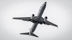 Boeing 737-990(WL) N320AS Alaska Airlines (William Musculus) Tags: seattle tacoma seatac sea ksea international airport washington étatsunis us n320as alaska airlines boeing 737990wl 737900wl as asa william musculus