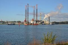 Multratug 16,  Multratug 5, Seafox 2, Fairplay 1  en Fairplay 3 (Hugo Sluimer) Tags: hetscheur scheur waterweg portofrotterdam port haven onzehaven nlrtm zuidholland holland nederland