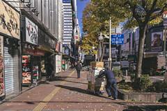 DSC_9634 (juor2) Tags: hokkaido university ginkgo japan nikon scene d4 streetsnap street