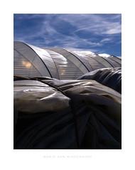 cheeky composition (MvMiddendorf) Tags: greenhouses inthefields cologne openairstill stilllife strusctures form light dusk