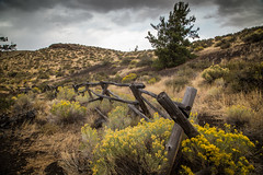 Old Time Fence (BP3811) Tags: 2018 arco cratersofthemoon fencepost greatrift idaho lava nationalmonument preserve september volcanic wildflowersf fence scenic