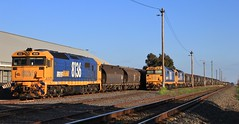8136 8181 and 8176 are shutdown at Marmalake after arriving on GK6 empty feed train (bukk05) Tags: 8136 railpage:class=47 railpage:loco=8136 rpaunsw81class rpaunsw81class8136 8181 8176 81class wimmera westernstandardgaugeline wagons explore export engine emd electromotivediesel emd16645e3b railway railroad railpage rp3 rail railwaystation railwaystations train tracks tamron tamron16300 trains yard yarriambiackshire yarriambiack photograph photo pn pacificnational loco locomotive jt26c2ss horsepower hp grain graincorp flickr freight diesel dieselelectriclocomotive station standardgauge sg spring australia artc canon60d canon clyde clydeengineering victoria vr victorianrailway vline victorianrailways mainline murtoa marmalake 2018