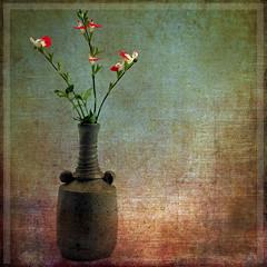 October Blooms (andycurrey2) Tags: smileonsaturday seasonsflora sage flower hotlips texture stilllife