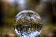 west windsor house3 (andrewryder) Tags: crystal ball windsor reading vermont vt cavendish foilage leaves leaf fall autumn color woods nature landscape landscapes