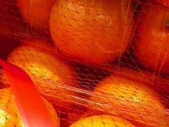Oranges (John D McDonald) Tags: oranges orange fruit citrus citrusfruit citric colour