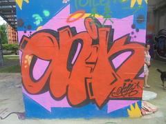 134 (en-ri) Tags: onik arancione nero rosa parco dora torino wall muro graffiti writing blu