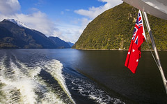 Enchantment (Matt Champlin) Tags: newzealand travel adventure amazing fun hike hiking rainforest doubtful sound fjords doubtfulsound fjordlandnationalpark nature outdoors boat boating cruise tourism exotic mountains flag green lush canon 2018
