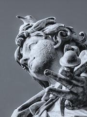 _7107663 (Marco Ambrosini Fotografo) Tags: statue angeli angels roma rome pontesantangelo wings ali uccelli birds piccioni gabbiani seagull pigeons religion religione blackandwhite biancoenero silhouette arte art storia history trip gita città city bridge ponte