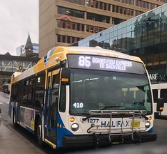 The Oldest New Bus (The Halifax Transit Fan!) Tags: hfxtransitroute85 hfxtransit1277 novabuslfs canadianpublictransit publictransit canadiantransit newbus novabus hfxtransit transitphotography busphotography transitbus transit bus scotiasquare halifaxtransit