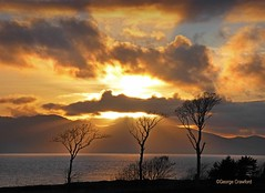 Three Trees Portencross Sunset (g crawford) Tags: crawford westkilbride seamill portencross ayrshire northayrshire water clyde riverclyde firthofclyde sunset sundown gloaming orange sky tree trees copse wood stand arran ardneil bay ardneilbay portencrossroad golfcourse westkilbridegolfcourse