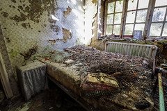 Maison Alexa (Hooismans) Tags: abandoned abandon abandonné abandonnée abbandonato abbandonata ancien ancienne alone architecture explorationurbaine exploration explore exploring empty explo explored distillery trespassing rust rusty ruins rotten urbex urban urbain urbaine urbanexploration interdit interior inside inexplore old past photography decay decaying derelict dust decayed dusty forgotten forbidden lost light nobody neglected building verlassen creepy huge industrial factory ceiling arch road tree sky plant control room verlaten verlatengebouw grass urbexnetherlands tabula rosa belgium urbexbelgium urbexbe