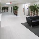 Oxford Exec Suites - Lobby 3