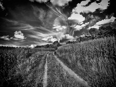 a road less traveled (TimsTolalPhotography) Tags: blackandwhite road sky field landscape outside