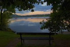 Watching the Sunrise (TERRY KEARNEY) Tags: watchingthesunrise sunrise water reflections boats lakewindermere lakedistrict lake watercourse waterfront waterway elterwater chapelstile trees tree mountains mountain seat bench cloud skyline sky ambleside cumbria autumn canoneos1dmarkiv daylight day explore europe england fields kearney landscape nature oneterry outdoor terrykearney rural wildlife weather 2018 park grass forest serene wood