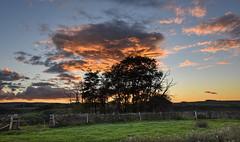 Dat Sky! (Jamesylittle) Tags: sun sunset countryside trees patch explore wall field farm footpath walk find starward gorge top hill whitfield allendale gringle pots cloud staward allen banks