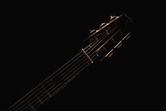 Gypsy Acoustic Guitar Neck (dejankrsmanovic) Tags: neck head tuner accentuated shape guitar acoustic gypsy jazz swing django favino style classical wood wooden instrument musical music sound audio equipment structure play object studio stilllife old retro vintage fret string board body model design closeup illuminated france french european culture dutch stylistic artistic art playful entertaining