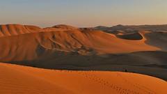 Spuren im Sand..... (marionkaminski) Tags: peru péru südamerika southamerica lateinamerica paisaje paysage landscape sunset coucherdusoleil wüste desert desierto ica desiertodeica panasonic lumixfz1000 perou