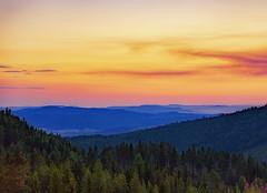 Burning Sunset (Marcus Nordenström) Tags: forest fire burning sunset valley clouds solnedgång skogsbrand skog dal ragunda ragundadalen smoke rök trees träd