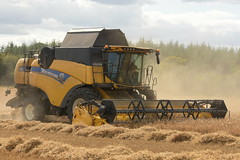 New Holland CX8.70 Combine Harvester cutting Spring Barley (Shane Casey CK25) Tags: new holland cx870 combine harvester cutting spring barley nh cnh yellow glenville newholland grain harvest grain2018 grain18 harvest2018 harvest18 corn2018 corn crop tillage crops cereal cereals golden straw dust chaff county cork ireland irish farm farmer farming agri agriculture contractor field ground soil earth work working horse power horsepower hp pull pulling cut knife blade blades machine machinery collect collecting mähdrescher cosechadora moissonneusebatteuse kombajny zbożowe kombajn maaidorser mietitrebbia nikon d7200