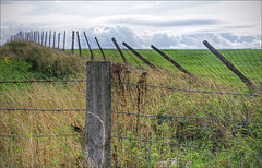Happy fence Friday, from Anglesey (alanhitchcock49) Tags: near burial chamber neolithic of barclodiad y gawres anglsey september 2018 hff happy fence friday