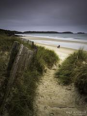 Accés à la plage des Blancs Sablons (clos du pontic) Tags: plage sable herbe dune sablon blans mer leconquet paysage fuji xt1 xf1024mmf4 r ois iroise finistère