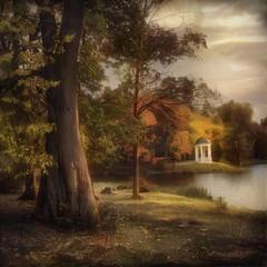 Autumn in Belkino. (odinvadim) Tags: mytravelgram iphoneart autumn iphone iphoneography iphoneonly forest obninsk evening snapseed painterlymobileart textures travel artist landscape textured