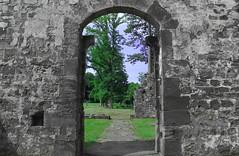 Zeitreise (Jörg Kage) Tags: ruine saarland worschweiler kloster klosterruine natur landschaft canoneos700d eos700d canonlens