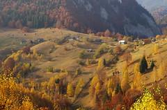 Autumn on the hills (Baubec Izzet) Tags: baubecizzet pentax nature autumn mountains flickrunitedaward