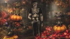 Sphynxie Halloween (Kai Wirsing) Tags: culprit clefdepeau boystothebone fakeicon cat halloween hunt groupgift