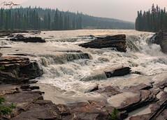 Athabasca Falls (since 1960) Tags: kanada canada alberta jasper nationalpark rockymountains berge wald forest river flus wasserfall waterfall landschaft landscape natur nature fujifilmxt1