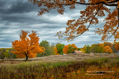 Late Autumn scene (susannevonschroeder) Tags: bluehills barn colors fall landscape trees