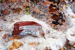 Plastic Planet (fstop186) Tags: plastic planet rubbish litter bottles
