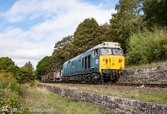 20181004-IMG_2525 (deltic21) Tags: severn valley railway svr severnvalley preserved preservation diesel power traction heritage classic transport wheel wheels motion loco locos locomotive train trains rail rails track tracks br british type class restored restoration moving railways trees outdoor outside nature bewdley kidderminster bridgenorth shropshire worcestershire midlands engine clag 50008 freight dcwa mono monochrome bw 50 alliance thunderer log hoover large logo ee english electric
