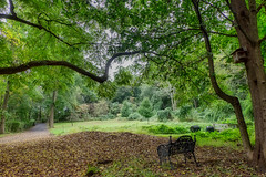 Have a Seat (JMS2) Tags: nature park bench forest preserved scenic landscape peaceful