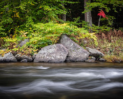 Vermont Fall Foliage 2018 (willsdad48) Tags: vermont new england fallfoliage fallcolors autumn lake river sunrise travel travelphotography nature hiking fujifilm xt3 woods forest