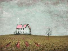 As If In A Dream (sharon o*brien huey) Tags: dreams magicalrealism sharonobrienhuey fairytale imagine imagination farm farmhouse
